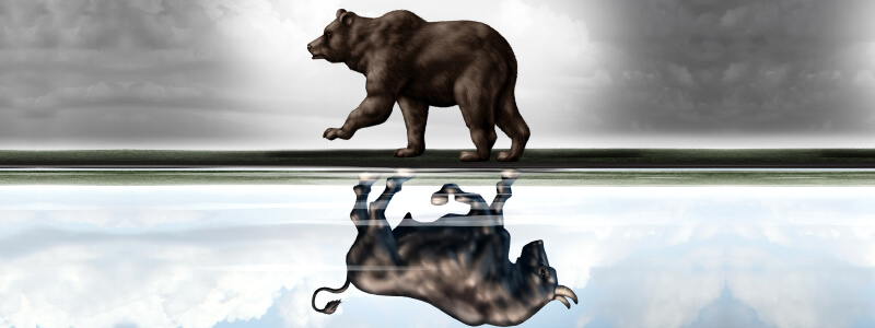 Turbulent Times: Bear Markets Come and Go